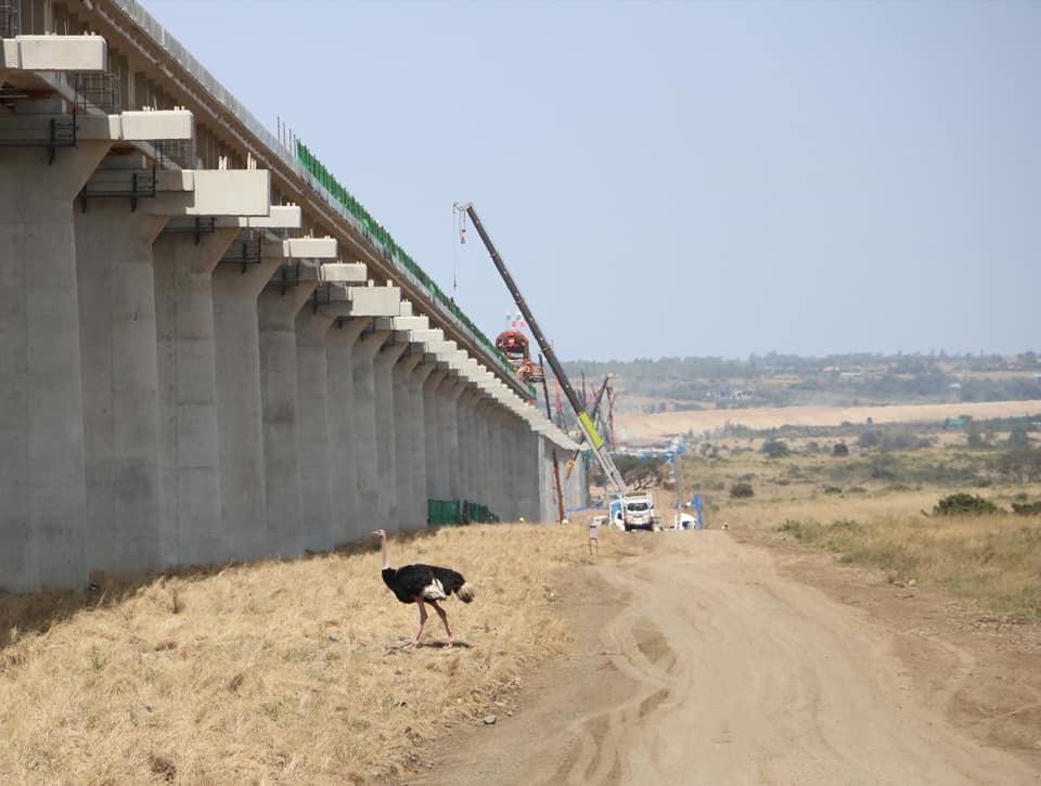 N Park bridges in progress
